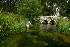 Fishing breaks chalkstream fly fishing for Trout farm fishing near me
